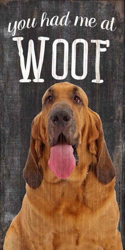 Bloodhound Sign – You Had me at WOOF 5×10 1