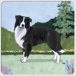 Border Collie Yard Scene Coasters Set of 4