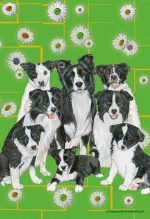 Border Collie Garden Flag 12.5 x 18 in