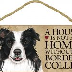 border-collie-house-is-not-a-home-sign (2)