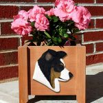 border-collie-planter-tri