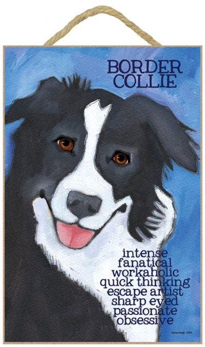 border-collie-sign-dodge