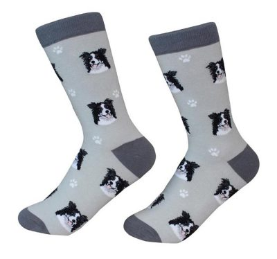 border-collie-socks-es