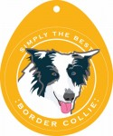 Border Collie Sticker 4x4""