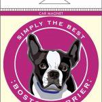 Boston Terrier Car Magnet 4×4″ 1