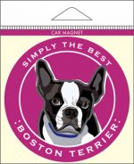 Boston Terrier Car Magnet 4x4""