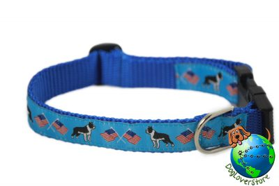 Boston Terrier Dog Breed Adjustable Nylon Collar Medium 10-16″ Blue 1