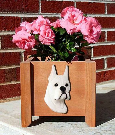 Boxer Planter Flower Pot White 1