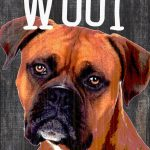 Boxer Sign – You Had me at WOOF 5×10 1