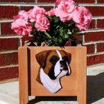 Boxer Planter Flower Pot Fawn Uncropped 1
