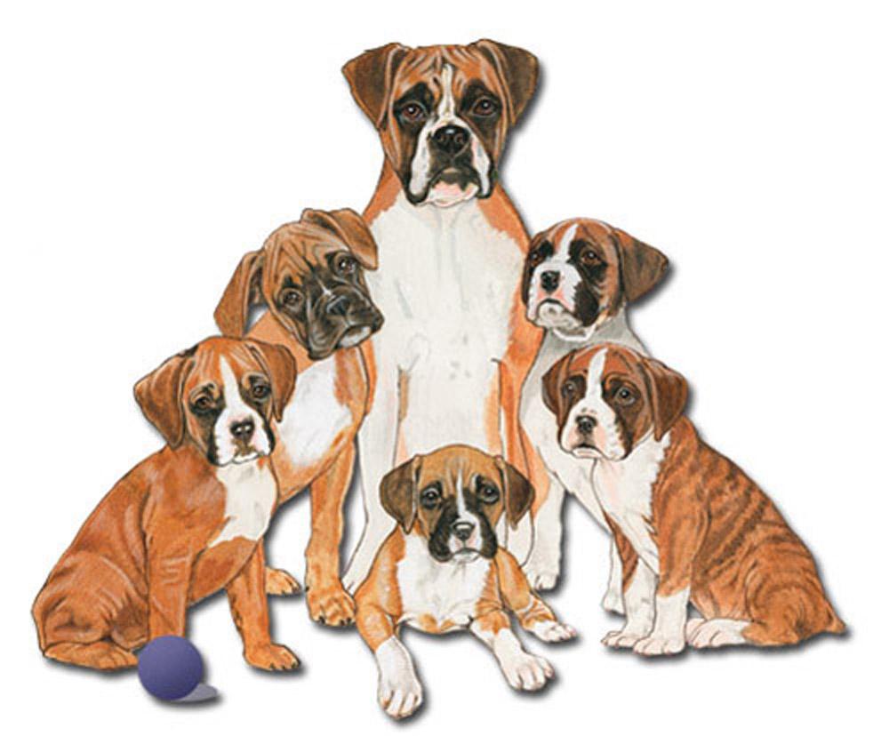Boxer Wooden Magnet Family