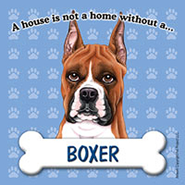 Boxer Cropped Dog Magnet
