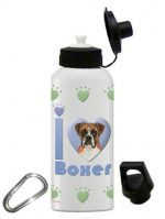 Boxer Water Bottle Stainless Steel 20 oz Uncropped