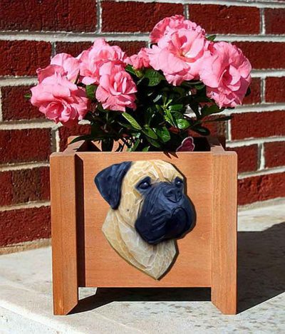 Bull Mastiff Planter Flower Pot Fawn 1