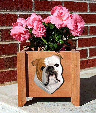 Bulldog Planter Flower Pot Tan 1
