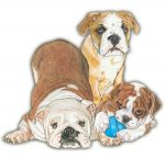 Bulldog Wooden Magnet Family