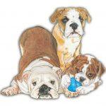 bulldog-wood-magnet