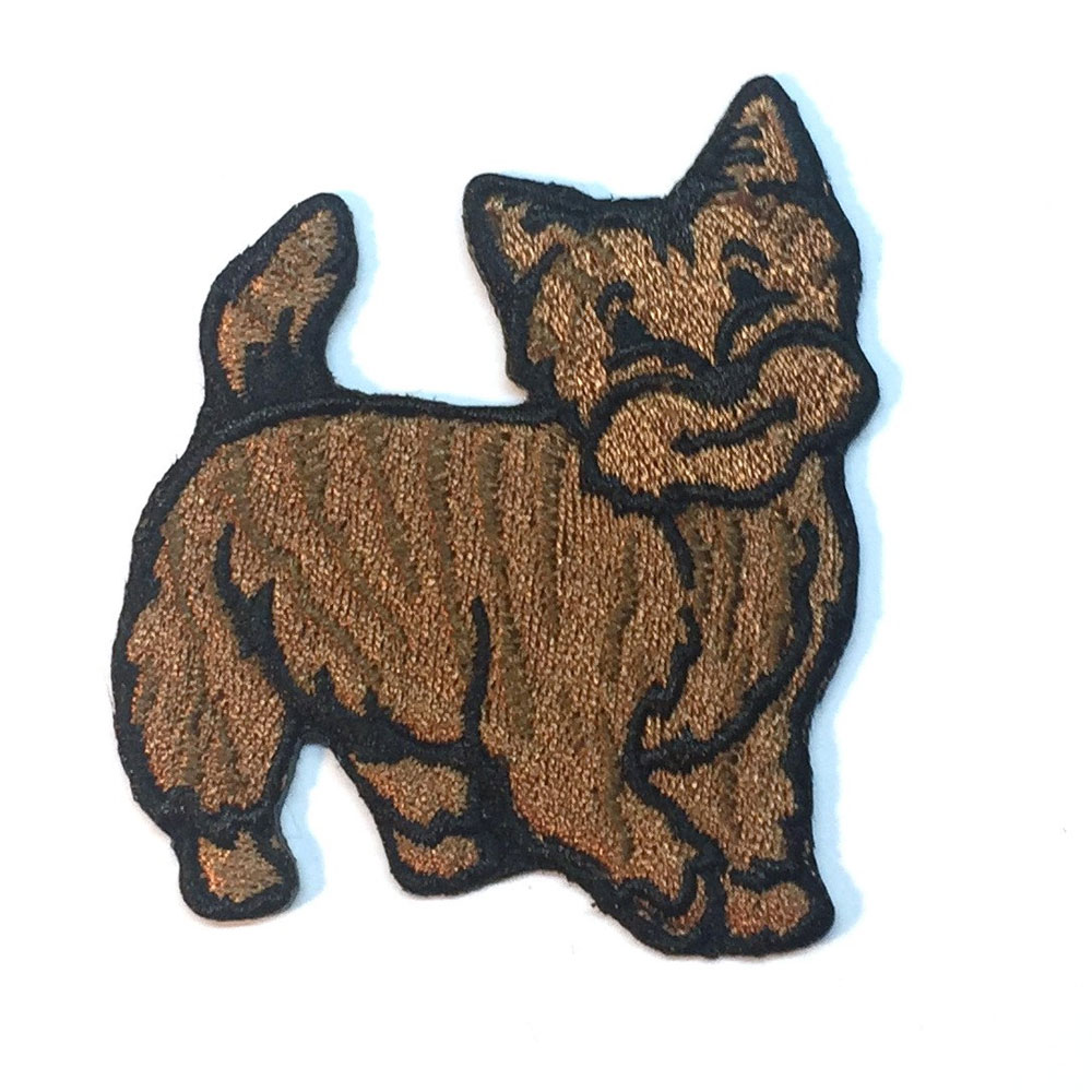 Cairn Terrier Patch Brindle