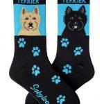 cairn-terrier-socks-blue