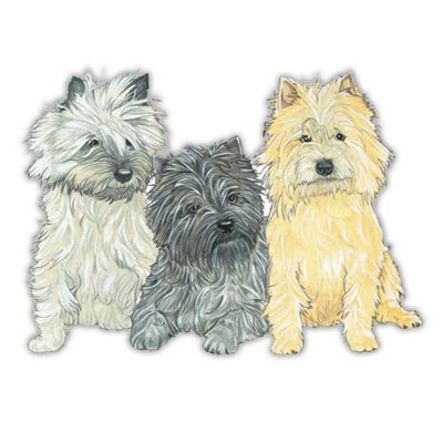 cairn-terrier-wood-magnet