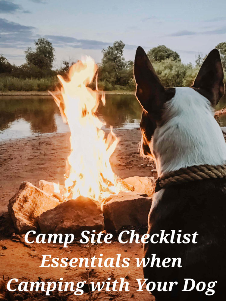 Camp Site Checklist with Dogs