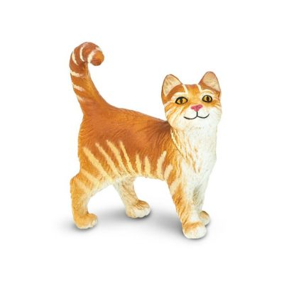 Safari Orange Tabby Cat