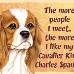 cav_king_charles_people_meet_magnet