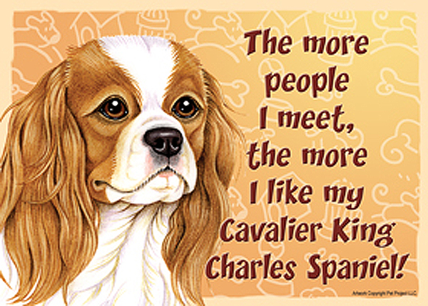 cav_king_charles_people_meet_magnet