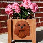 Cavalier King Charles Planter Flower Pot Ruby 1