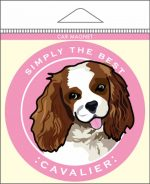 "Cavalier King Charles Car Magnet 4x4"" Blenheim"