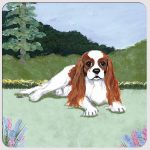 Cavalier King Charles Yard Scene Coasters Set of 4 Brown & White