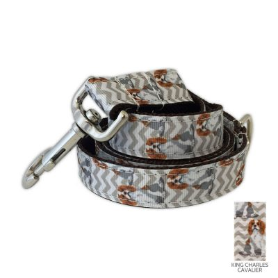 cavalier-king-charles-leash