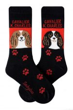 Cavaklier King Charles Socks Brown and Black Styles - Socks are Red and Black in Color