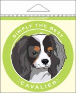 "Cavalier King Charles Car Magnet 4x4"" Tri Color"