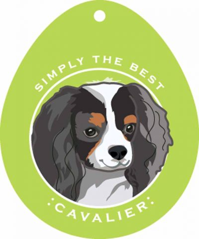 Cavalier King Charles Sticker 4×4″ Tri Color 1