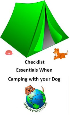 checlist-essentials-when-camping-with-dog-article