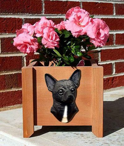Chihuahua Planter Flower Pot Black 1