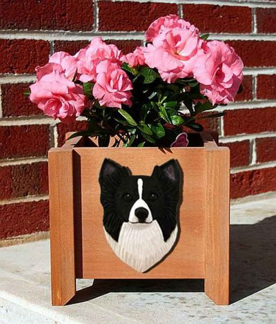 Chihuahua Planter Flower Pot Longhair Black White 1
