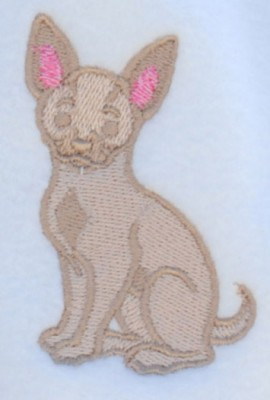 chihuahua-scarf-close-up