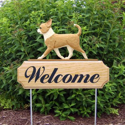 chihuahua-welcome-sign-fawn-white