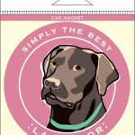 Chocolate Labrador Car Magnet 4×4″ 1