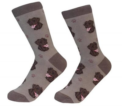 Chocolate Lab Face Pattern Socks