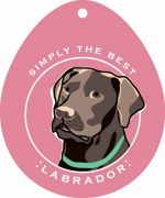 Chocolate Labrador Sticker 4x4""