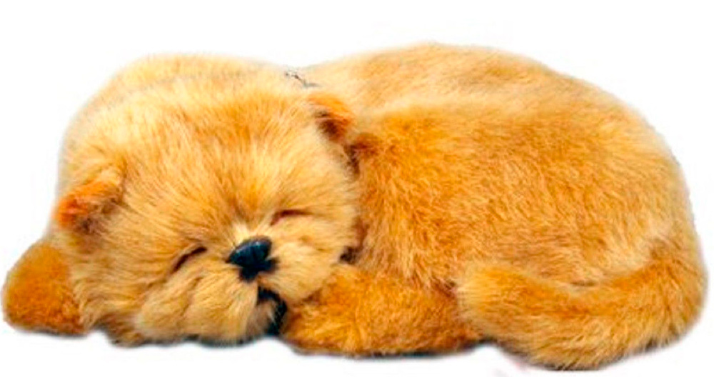 Chow Chow Perfect Petzzz Stuffed Animal