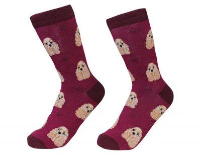 cocker-spaniel-socks-es