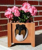 Collie Planter Flower Pot Rough Tri Merle