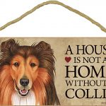 Collie Wood Dog Sign Wall Plaque Photo Display 5 x 10 + Bonus Coaster 1