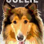 Collie Sign – I Love My 5×10 1