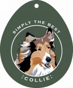 Collie Sticker 4x4""
