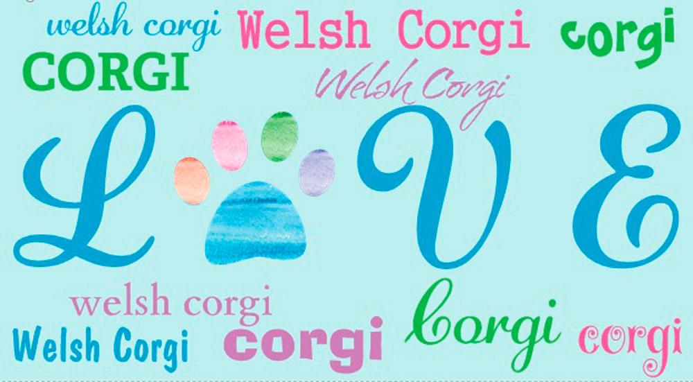 Corgi Rectangular Magnet That Says Love & Corgi in a Pattern
